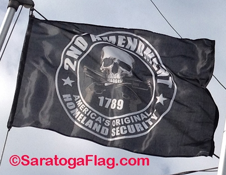 FLAG: Second Amendment - 1789- America's Original Homeland Security